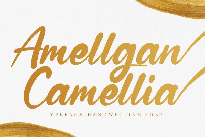 Amellgan Camellia