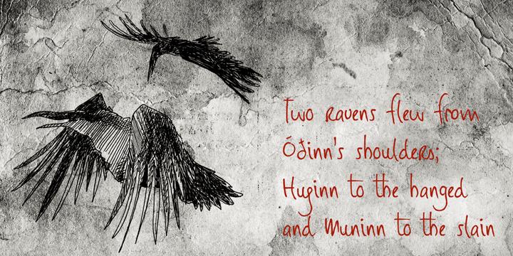 DK Huginn And Muninn