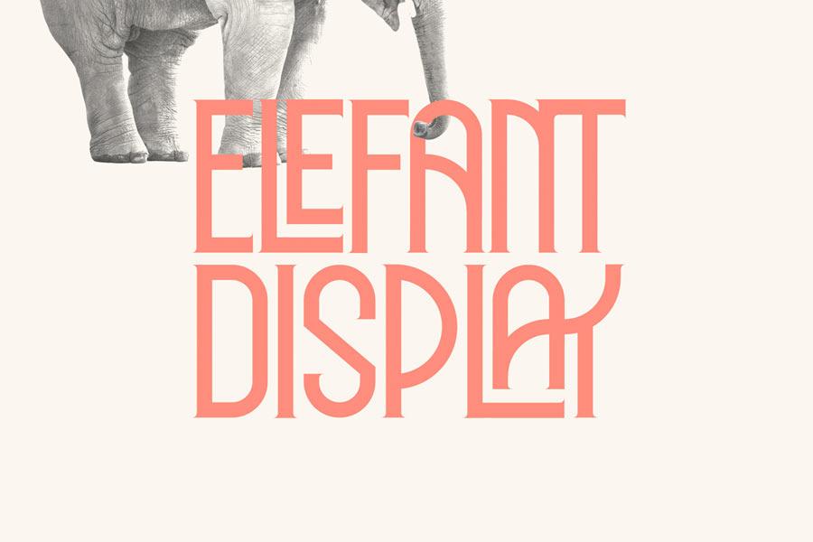 Elefant Display