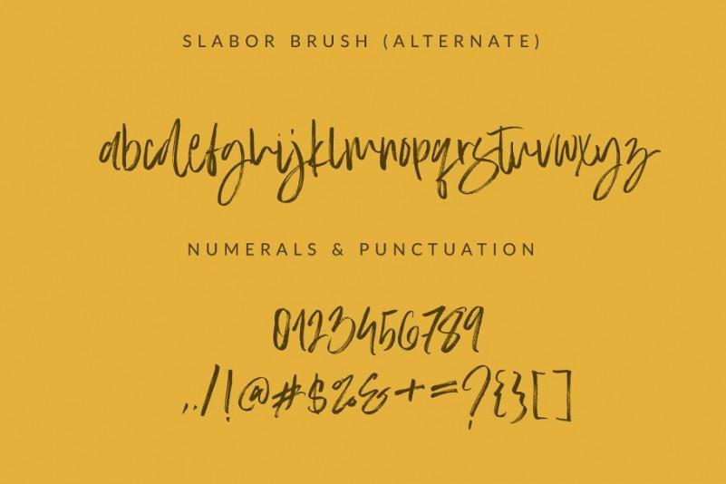 Slabor Brush
