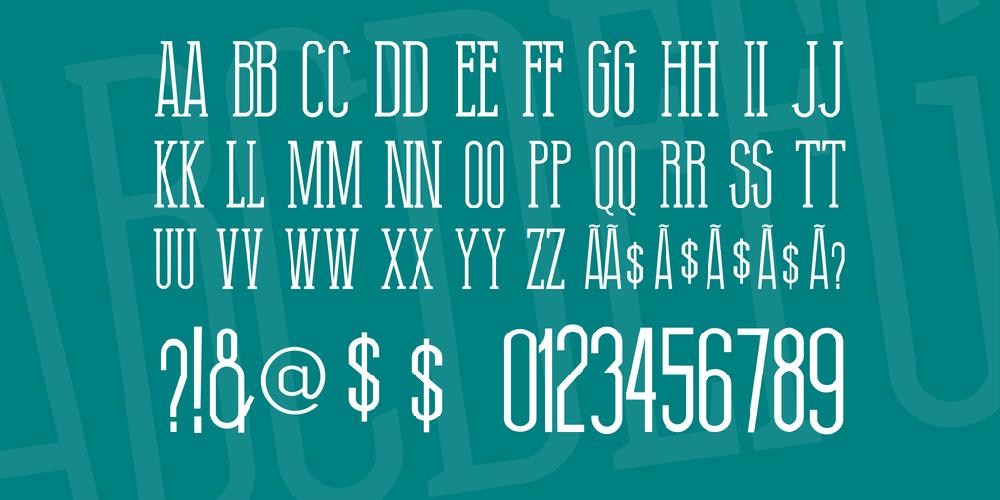 Thin Grotesk Serif